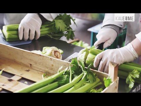 Kale&Me - Aus Liebe zum Saft