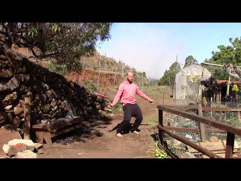 Yan Chi Gong 1 bis 7 - effektives Trainingssystem aus der Shaolin-Tradition für Körper & Geist