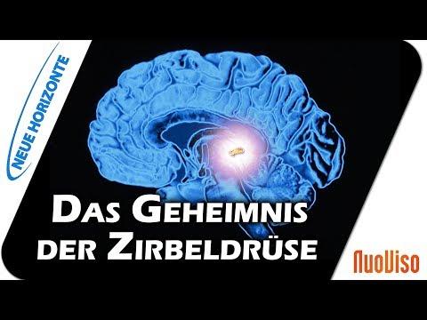 Die Zirbeldrüse als Schlüssel - Dr. Heidi Wichmann