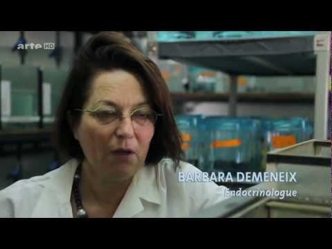 arte: Chemie im Wasser - die unsichtbare Gefahr