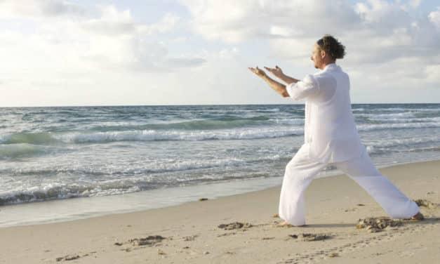 Über Yan Chi Gong als authentisches + ursprüngliches Gong-System und meine Erfahrung nach 9 Monaten regelmäßiger Übung