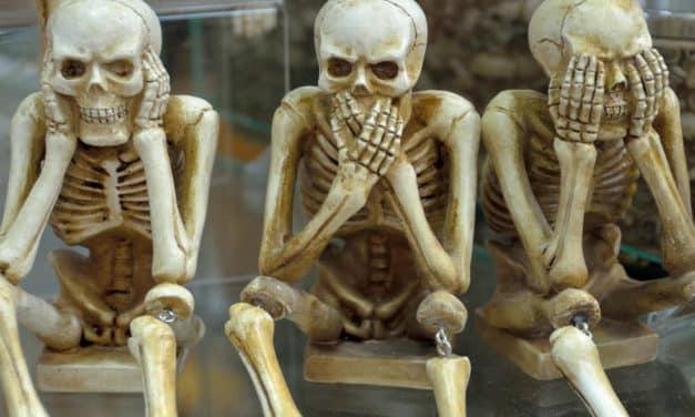 Osteoporose – Jeder Dritte über 60 ist betroffen → 3 Nährstoffe für starke Knochen!