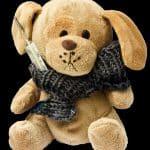 teddy-242876_640