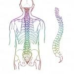 Rückenschmerzen selbst behandeln – Eine Übung für zu Hause