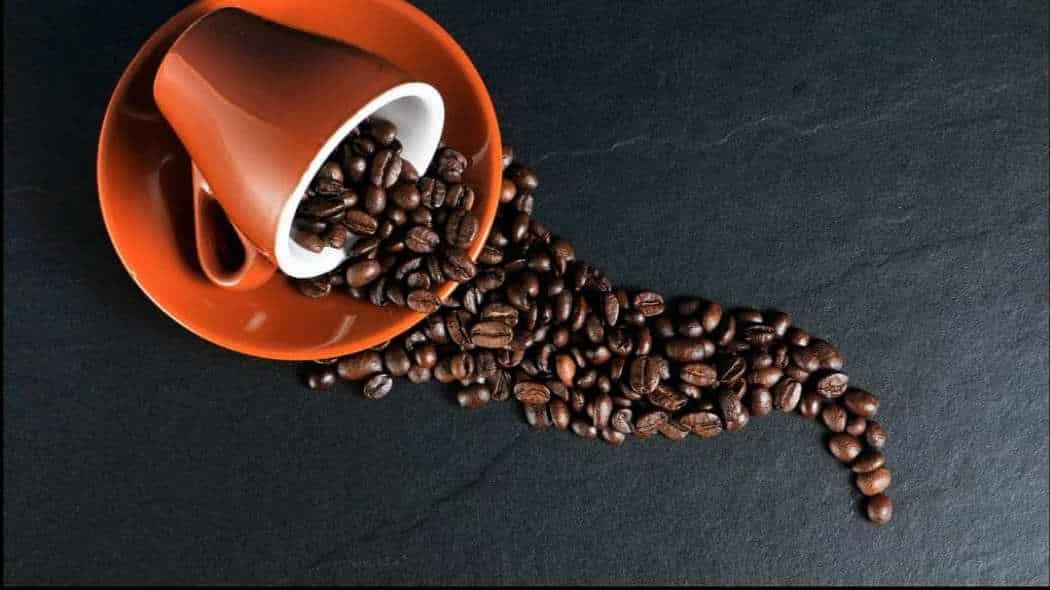 Ist Kaffee trinken gesund oder schädlich?