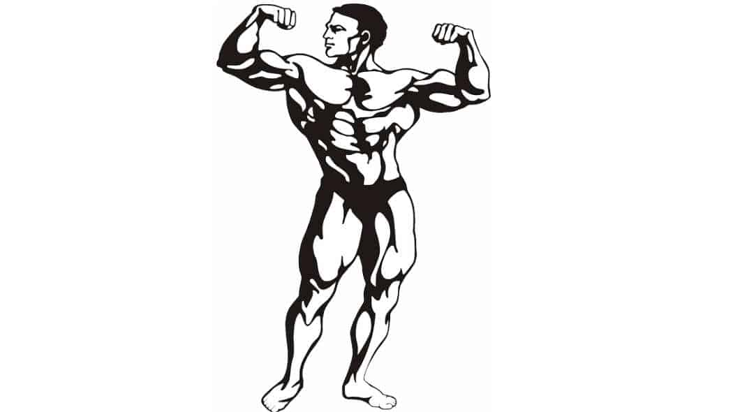 """Mehr Muskelaufbau durch """"Mind-Muscle-Connection"""" und Biofeedback"""