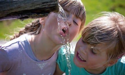 Wieso Wassertrinken allein für eine gute Wasserversorgung nicht ausreicht