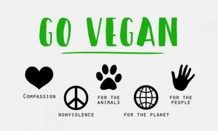 Vegane Lebensmittel sind nicht gesund?
