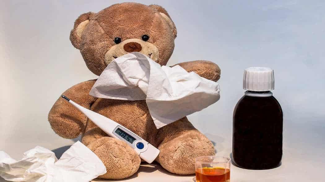 Herbstzeit ist Grippezeit – Schutz aus der Natur