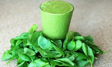 Buchbesprechung: Grün Essen! von Dr. Mutter