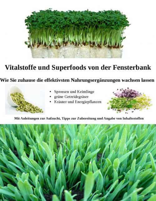 Cover Sprossen Vitalstoffe von Marion Selzer und Jens Sprengel