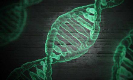 Epigenetik: Der Einfluss von Gedanken und Gefühlen auf unsere Gene