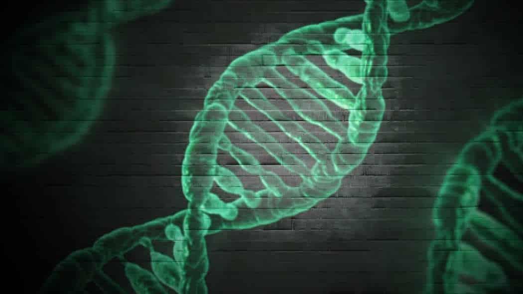 Neue Medizin: Grundlagen über Diagnoseverfahren der Energiemedizin