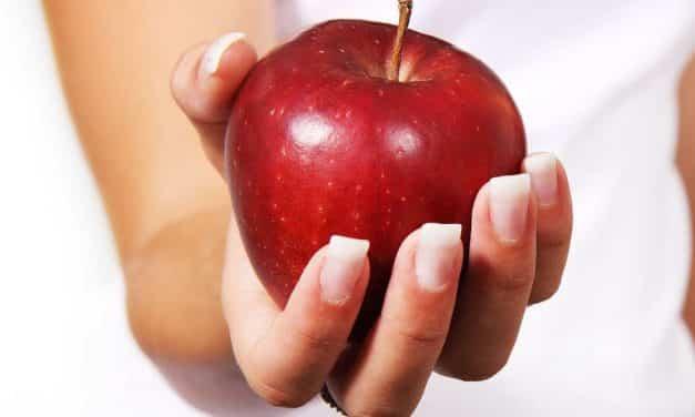 Wie entsteht eine Fettleber und was hat Fruchtzucker damit zu tun?