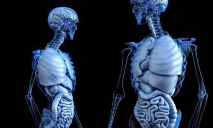 Leber- und Gallenblasenreinigung effektiv und unkompliziert