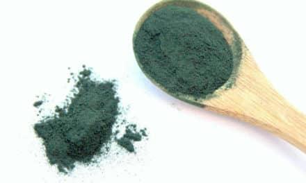 Spirulina –  Vollwertige pflanzliche Eiweißquelle und Nährstoffbombe