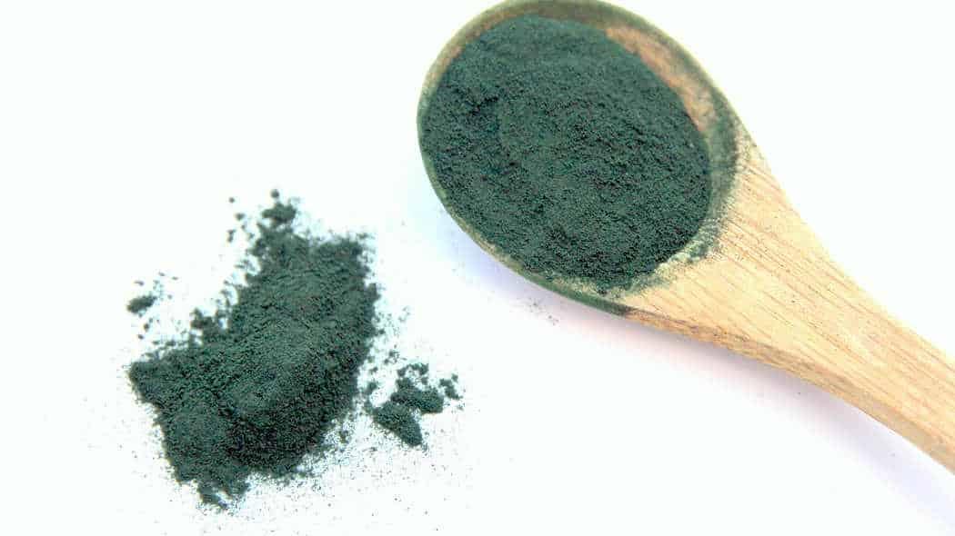 Chlorella Alge ist gesund, Spirulina auch: grünes Pulver auf Holzlöffel