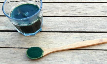 Spirulina und Chlorella: Algen im Vergleich – Tipps für die Kaufentscheidung