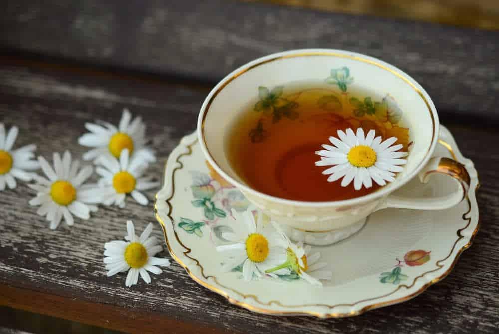 Fastenwoche mit Marion - Tasse Tee