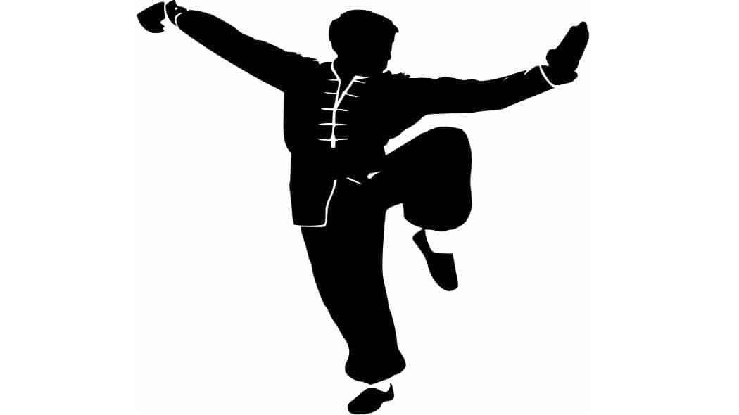 Im Interview mit dem Kampfkunst-Experten Frank Rudolph Teil 2