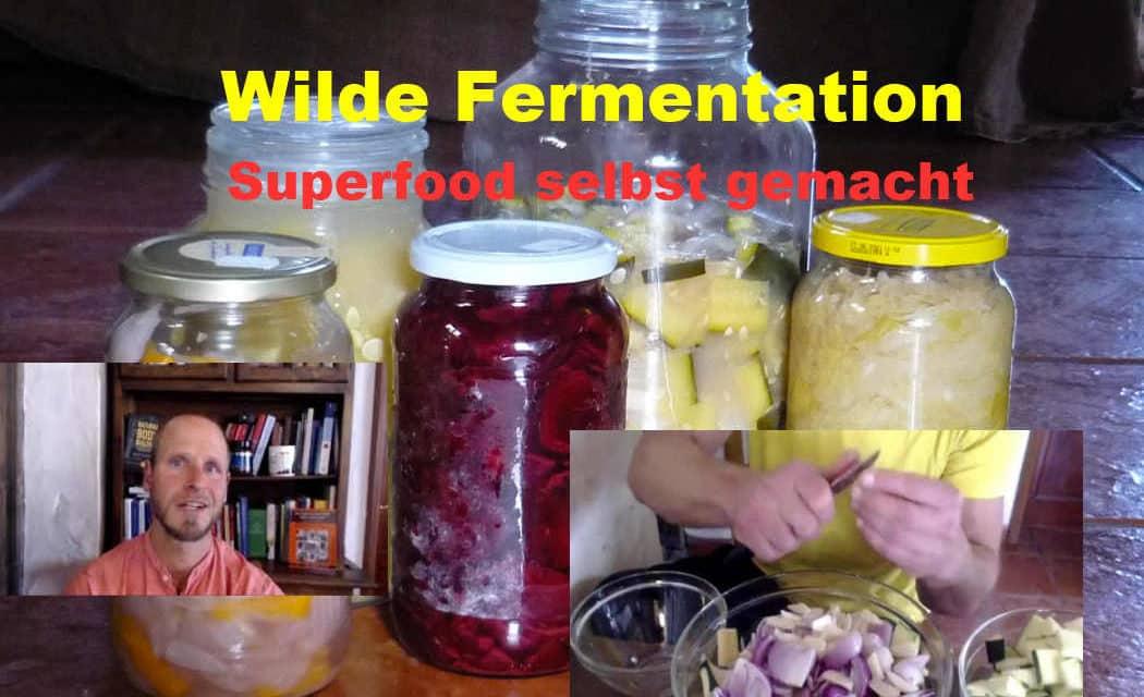 Wilde Fermentation – Gemüse fermentieren und einlegen leicht gemacht = GESUND & LECKER ❤ Probiotika ❤ Darmflora ❤ Immunsystem