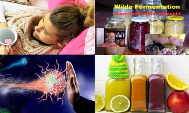 Immun-SPEZIAL -> Unsere besten Tipps für ein kompetentes Immunsystem und starke Abwehrkräfte
