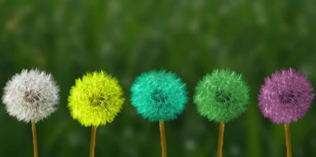 Die 4 Ebenen der Intuition und die Verbindung zu den Chakren